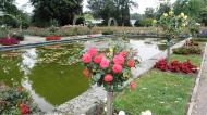 Grugapark7Sept1339.jpg
